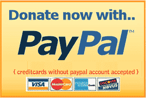 how-to-add-paypal-donate-button-300x202